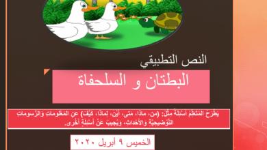 Photo of حل درس البطتان والسلحفاة لغة عربية للصف الثاني