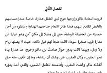 Photo of تلخيص الفصل الثاني بيضات النعام في الرمل رواية الولد الذي عاش مع النعام