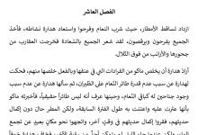 Photo of تلخيص الفصل العاشر هل تعنين أني لست طائر نعام حقيقياً رواية الولد الذي عاش مع النعام