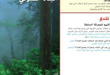 Photo of حل درس البناء الضوئي الوحدة الرابعة علوم صف خامس فصل أول