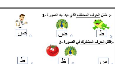 Photo of ورقة عمل حرف الطاء لغة عربية صف ثاني فصل ثاني