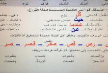 Photo of حل درس مصباح وبندق وتل الدببة الأخضر السعيد لغة عربية صف ثالث