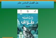 حل الفصل السادس عشر درس صيد من رواية ذئب اسمه طواف لغة غربية صف ثامن