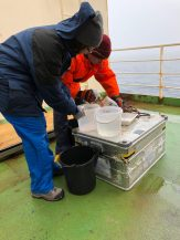Vasily filtering the sea creatures from the bucket of water with the help of Master student Nadezhda Zakharova.