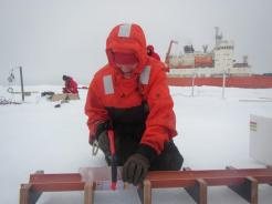 NABOS Teacher at Sea Moira O'Malley sawing the ice core into pieces before measuring.