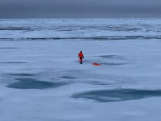 Sea Ice Physics Team Member Simon Hummel measuring ice thickness with a ground-based electromagnetic (GEM) instrument.