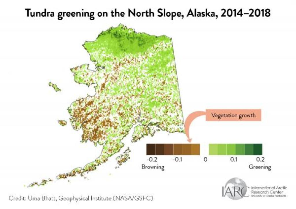 tundra greening north slope map