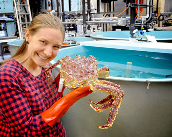 scientist with king crab