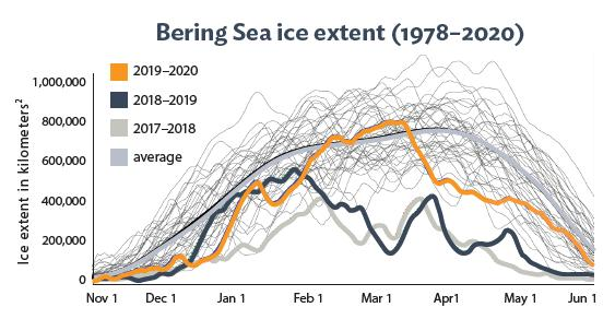 graph of bering sea ice extent