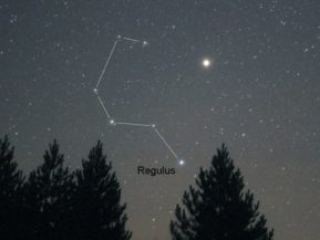 Image result for leo constellation question mark painting
