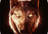 The Wolf 1.0.1 APK + MOD (Unlimited Money)