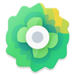 Moxy Icons 1.7 APK Patched