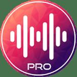 VOKO Radio PRO Global Streams 2.1 APK Paid