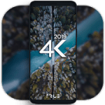 4K Wallpapers  Auto Wallpaper Changer 1.8.4 Pro APK Modded