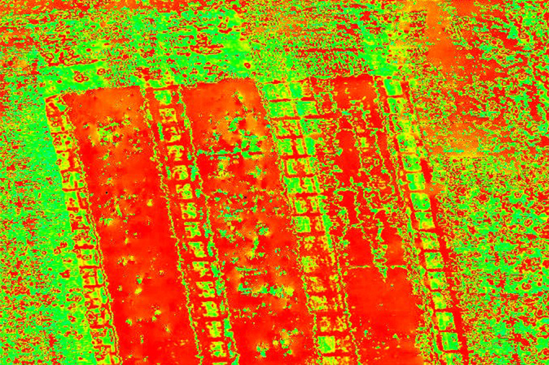 altigator ndvi field agriculture crop uav drone service - Aerial services provision