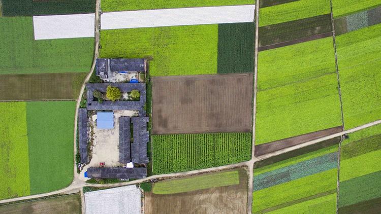 scholar-farm-drones
