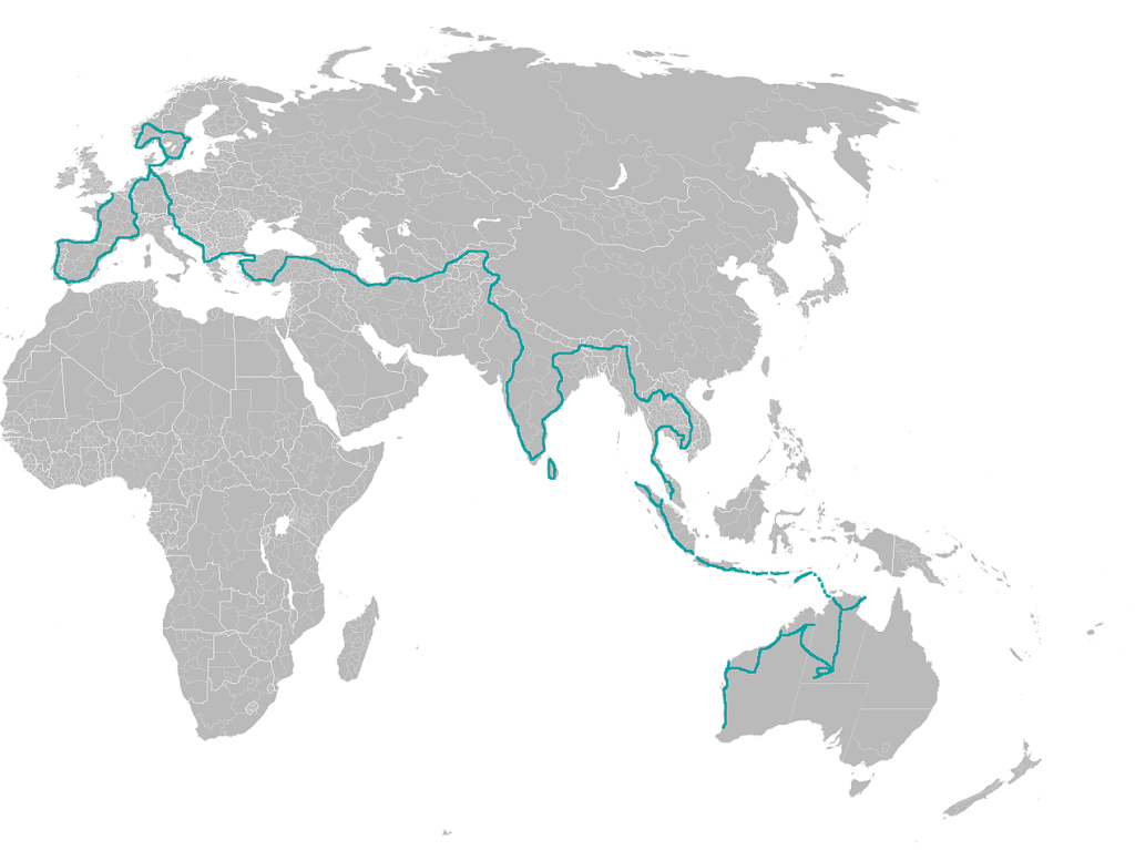 the-way-overland-map
