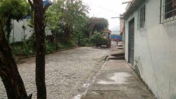 Limpeza das ruas está sendo feito até aos domingos