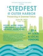 STEDFES Poster4