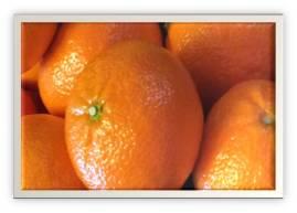 Focus on oranges