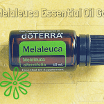 What is Melaleuca Essential Oil Good For?