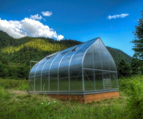 Climapod 7×12 6-MM Twin-wall Polycarbonate Greenhouse