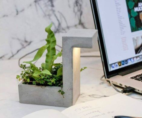Concrete Desk Planter Doubles as a USB Lamp