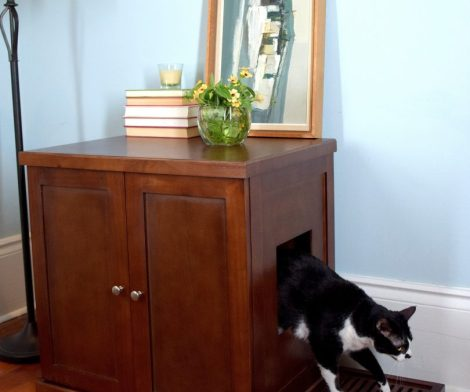 Refined Litter Box Cabinet for Cats