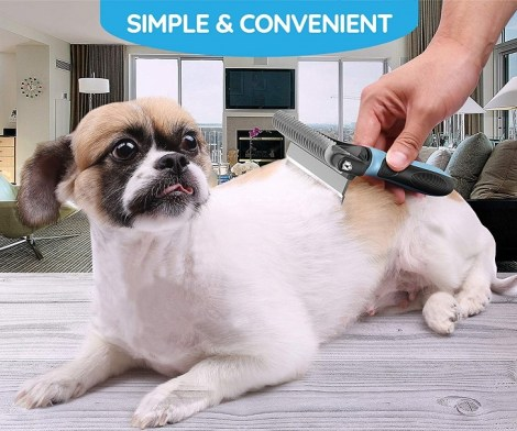 Dual Head Pet Brush Grooming Tool