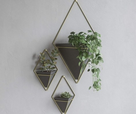 Umbra Trigg Hanging Planter Wall Decor Set