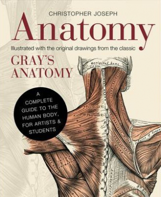 Anatomy : A Complete Guide To The Human Body For Artists ...