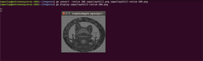 redimensionar imagem 300 gm Graphicsmagick