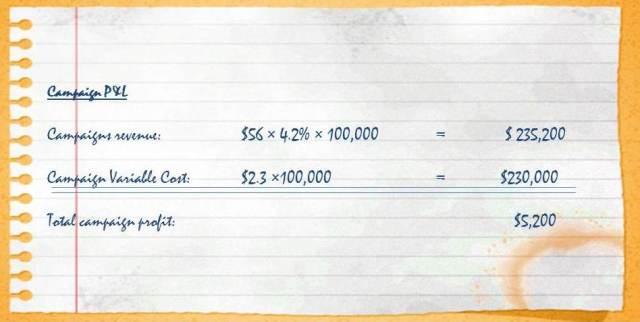 Campaign profit & Loss