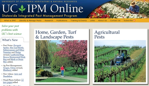 Image result for uc ipm