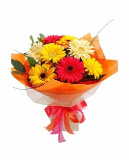 12 Mix Gerberas Bunch with Special paper packing