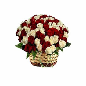 Red & White Roses Basket arrangement