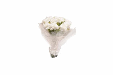10 White Carnations Hand Bunch