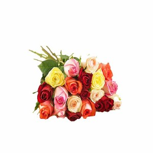 12 Mix Roses Hand Bunch