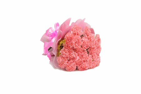 15 Pink Carnations Hand Bunch