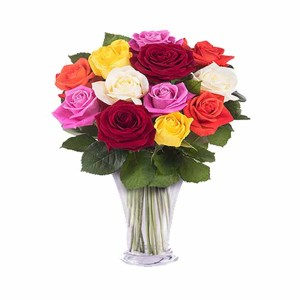10 Mix Roses Hand Bunch