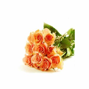 Orange Roses Hand Bunch