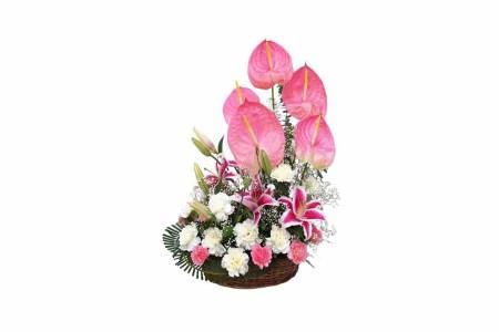 Mix Flowers Basket arrangement with Lilies, Carnation & Anthurium