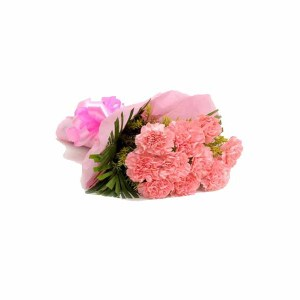 10 Pink Carnations Hand Bunch
