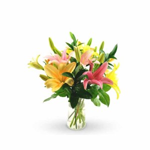 8 Mix Color Lilies Hand bunch
