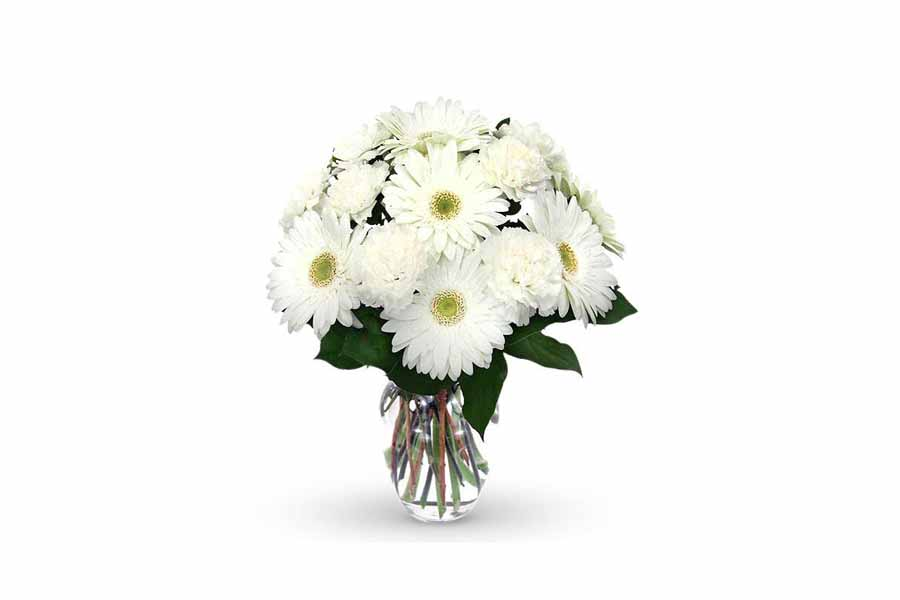 15 white flowers gerberas carnations bouquet chandigarh florist 15 white flowers gerberas carnations bouquet mightylinksfo