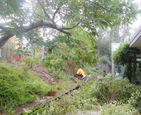 """2013 July - Trav's Trees clearing """"The Bank"""""""