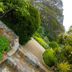 Heronswood steps to the front of the garden