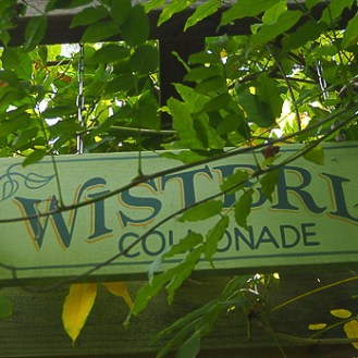 Wisteria Colonnade Sign