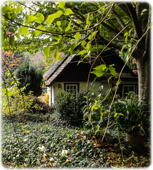 Cottage peeping out in the centre of the garden