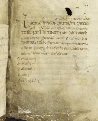 April 20th in the Martyrology of Óengus, UCD-OFM A 7, f. 16r, detail (https://www.isos.dias.ie/)